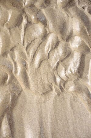 Abstract background  of thin wet sand