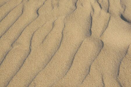 Background of  wavy beach sand Фото со стока