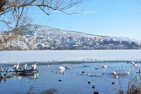 Town of Kastoria and half frozen lake Orestiada in a sunny day Banco de Imagens - 138230554