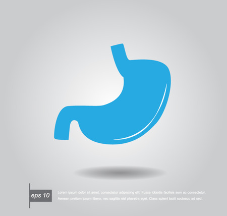 Human stomach vector icon Vector