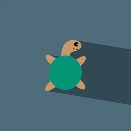 turtle flat icon  vector illustration eps10   Vector