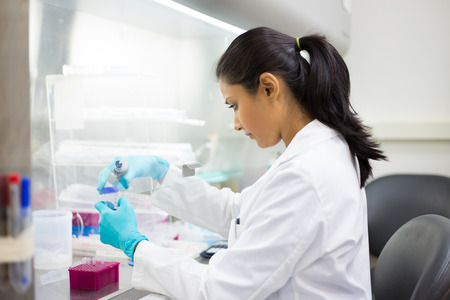 Closeup portrait, scientist holding 50 mL conical tube with blue liquid solution, performing laboratory experiments, isolated lab . Forensics, genetics, microbiology, biochemistry