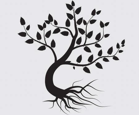 simbolos religiosos: �rbol completo negro con ra�ces aisladas de vectores de fondo blanco