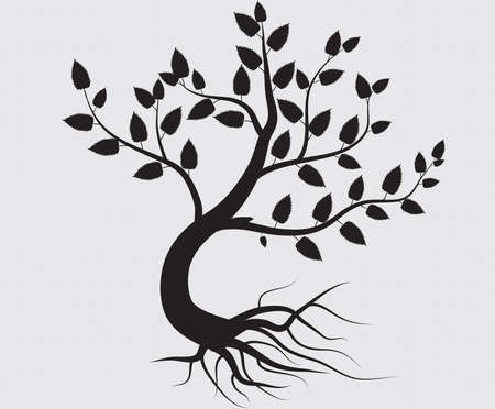 whole black tree with roots isolated white background vector Zdjęcie Seryjne - 18296458
