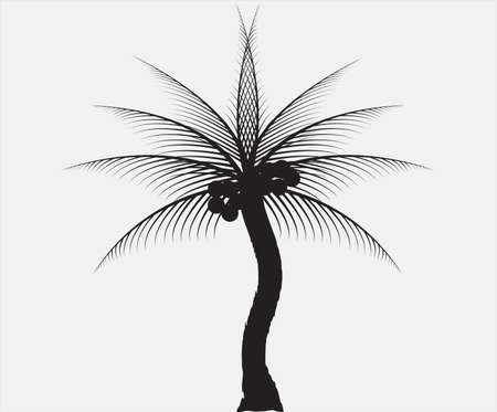Coconut Palm Tree Silhouette on Beach Vector Illustration