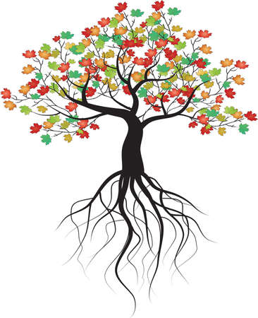 completed: whole black tree with roots isolated white background vector