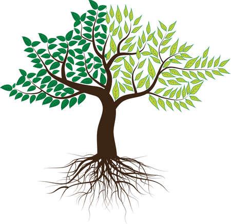 2-color tree. Illustration
