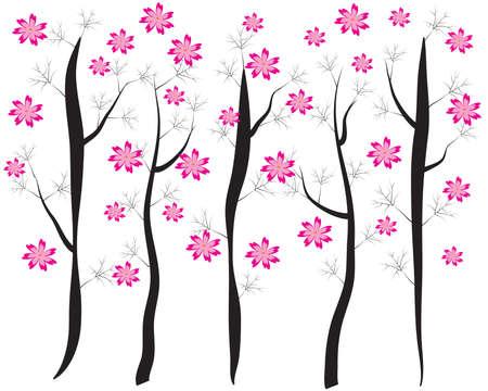 Pink Cherry Blossom - vector Illustration