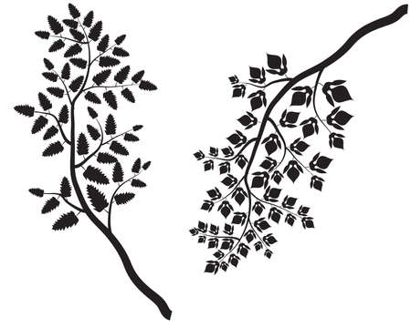 Vector Collection of Tree Branches Illustration