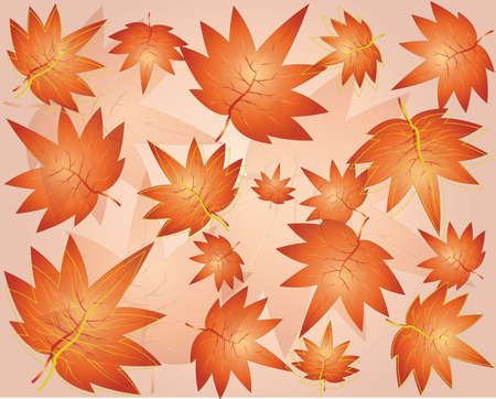 Colorful autumn leaves falling and spinning