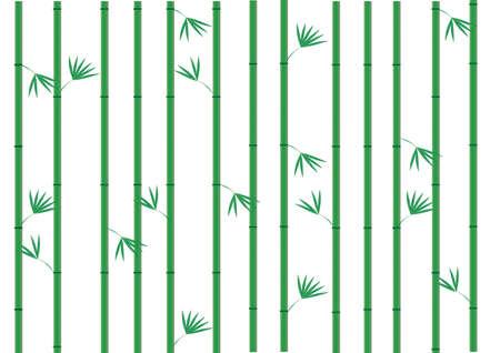 Bamboo,vector illustration Vector