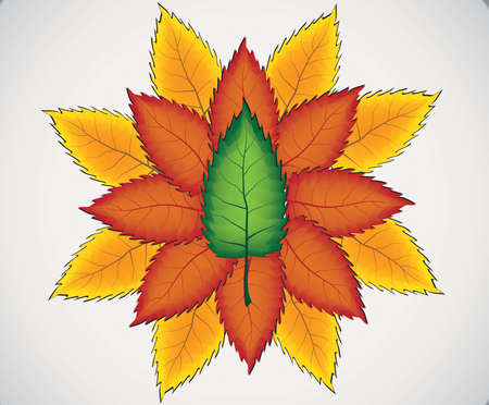 Fall leaves for an autumn background Illustration