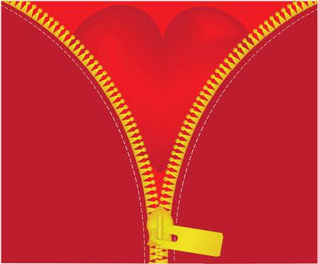 unzipped: red heart under unzipped