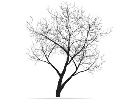 Dead Tree without Leaves Vector Illustration Sketched, EPS 10. Çizim