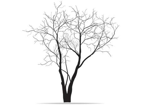 Dead Tree without Leaves Vector Illustration Sketched, EPS 10. Zdjęcie Seryjne - 37551351