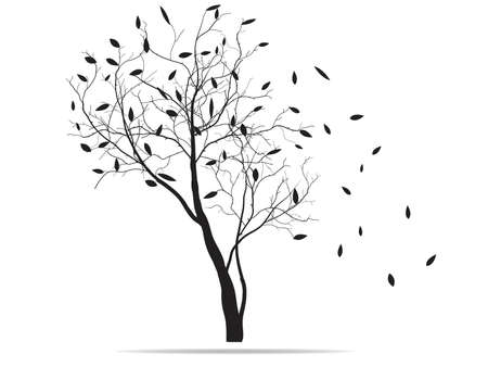 tree silhouette with fallen leaves
