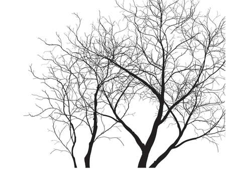 Dead Tree without Leaves Vector Illustration Sketched, EPS 10. Vettoriali