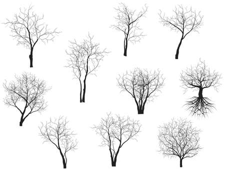 fall winter: Collection of trees silhouettes Illustration