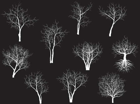 bareness: Collection of trees silhouettes Illustration
