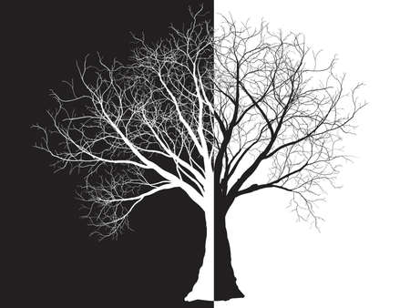 black-white tree silhouette isolated on white background, vector