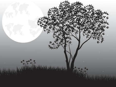afterglow: Natural scene with silhouette of tree against moon