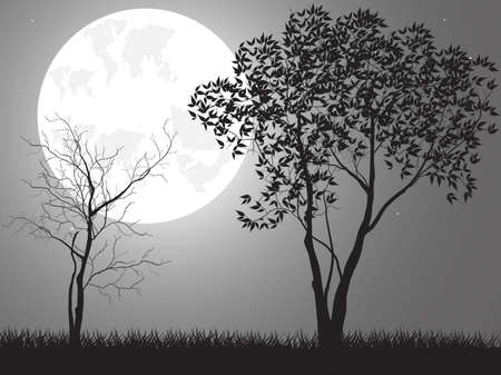 Vector night background with tree branches and the moon