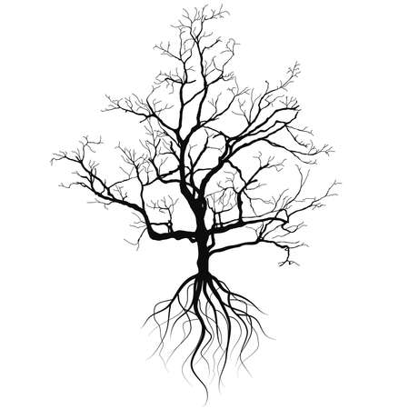 Tree silhouette  with roots Ilustracja