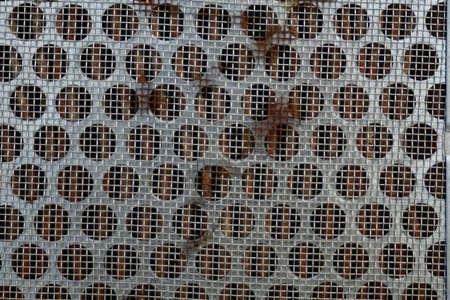 Old Metal mesh