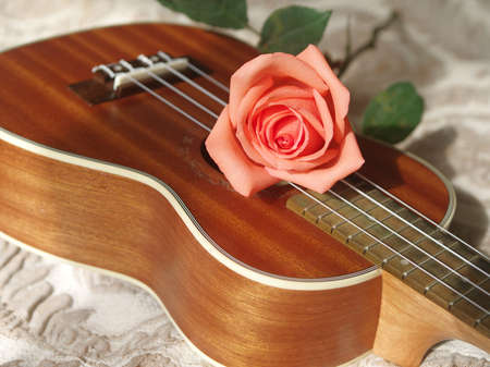 Rose on ukulele, Love, Valentines concept.
