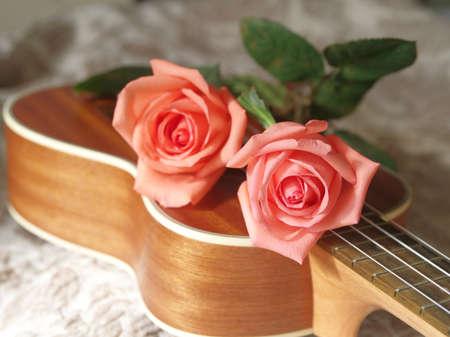 Roses on ukulele, Love, Valentines concept. Banque d'images