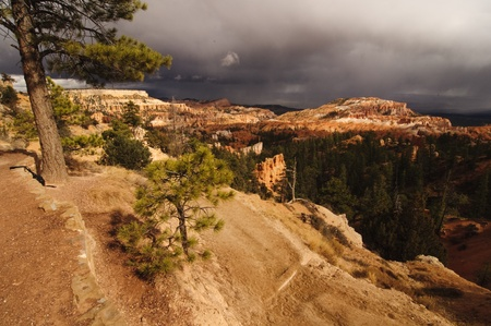 A beatiful Bryce Canyon in Utah, USA Stock Photo - 13269211