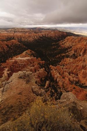 A beatiful Bryce Canyon in Utah, USA Stock Photo - 13269156