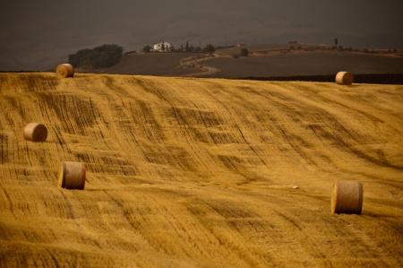 Countryside in Tuscany, Italy photo
