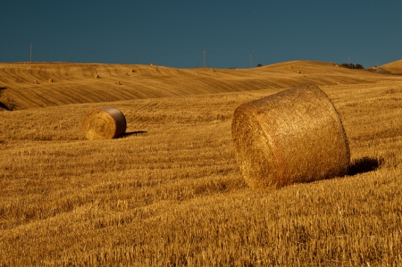 A september farmland in Italy photo