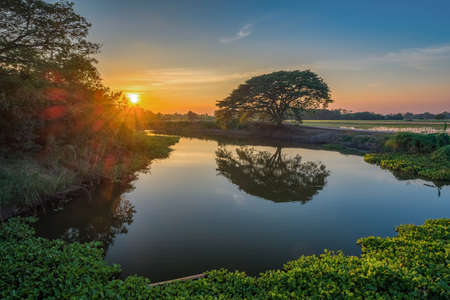 Image of tree water reflections with a beautiful cloudy blue sky on sunset time at Singburi province, Thailand.