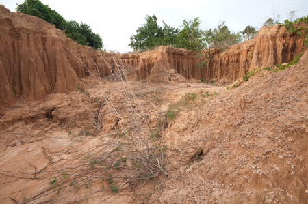 Soil structure  photo