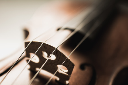 Close up shot of a violin,very soft def of field 免版税图像
