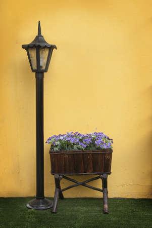 Muro, cosecha, de color amarillo con flores