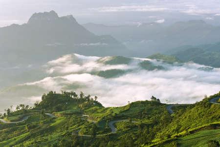 Niebla sobre el valle de la monta�a, paisaje ma�ana ver la parte superior, Tailandia