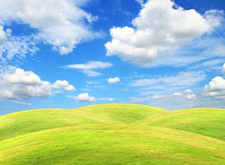 Hierba campo con cielo azul y nubes blancas