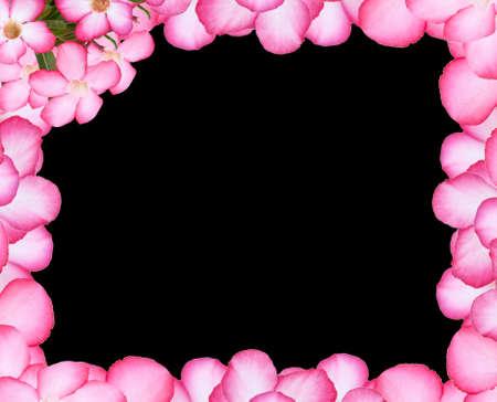 Flower frame on black background