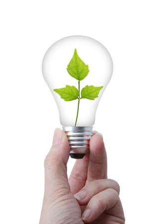 Clean environment concept ; lightbulb with leaves inside, Stock Photo