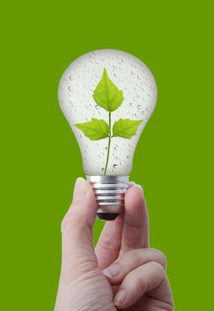 La energ�a natural Bombilla concepto con burbuja de agua y hojas sobre fondo verde