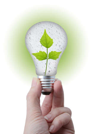 Natural energy concept  Lightbulb with water bubble and leaves, on white background Stock Photo