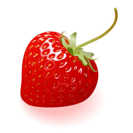 Delicious Strawberry Vector