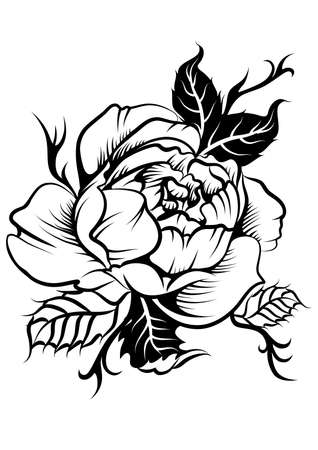 beautiful peony flower in tatto style Illustration
