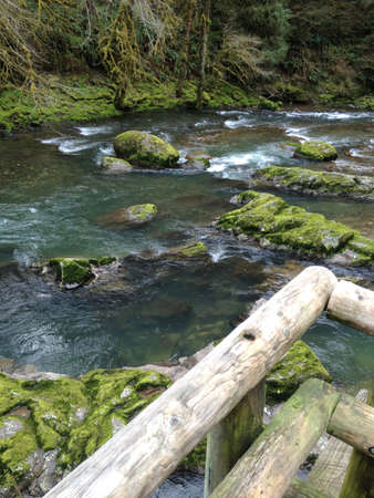 Trail to the Rivers Edge Stok Fotoğraf