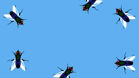 Flies on a blue background. Black flies randomly crawl along the border of the illustration. Template for a postcard, banner, invitation, or ad. Copy space.