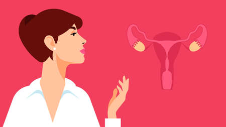 Woman gynecologist. Antenatal clinic. A young girl in a white shirt and an image of female reproductive organs. Consultation with a gynecologist and fertility specialist. Çizim