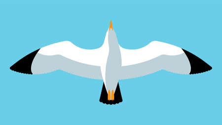 Flying seagull. Close up of a gull in the sky. Abstract bird. Vector illustration. Иллюстрация